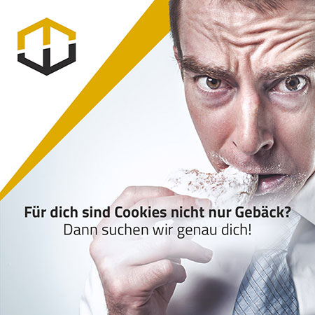 Online-Marketing & Webentwickler Jobs bei der Webcellent GmbH in Paderborn